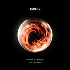 Sounds Of Tenshu Vol. 2