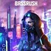 Download Project Z 2019 Mix (Team Bassrush) Mp3