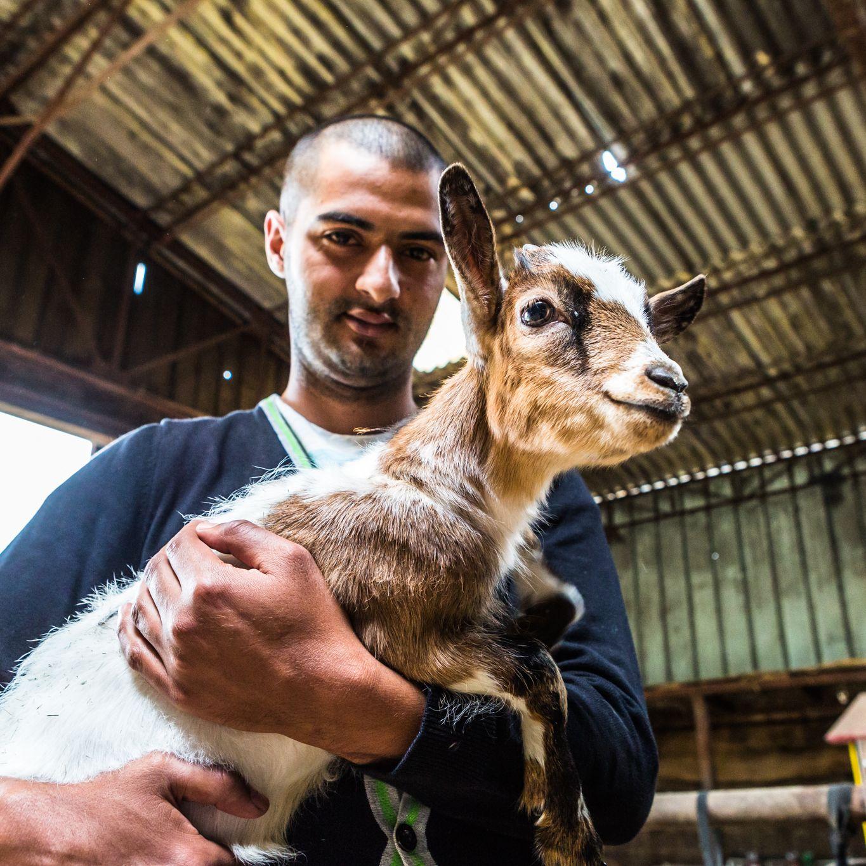 En Belgique des fermes accueillent des personnes en difficultés