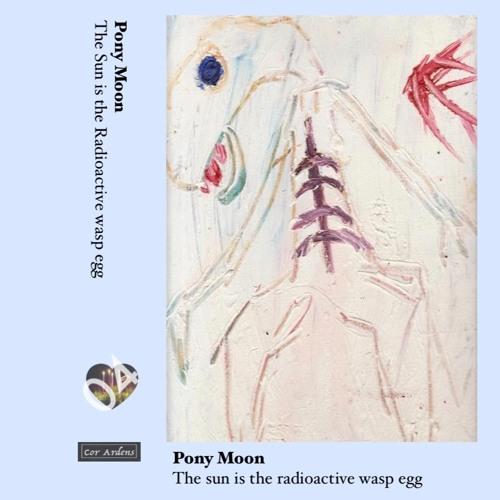 Pony Moon The sun is the radioactive wasp egg