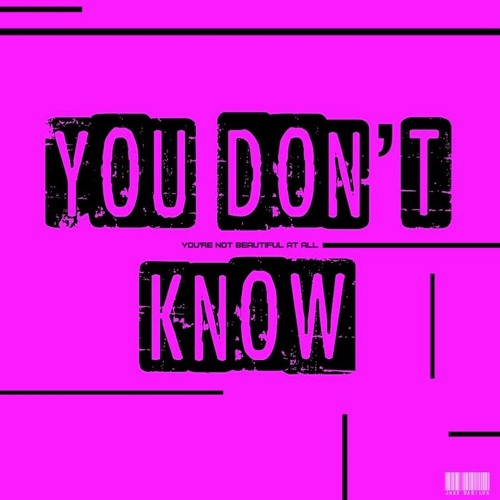 You Don't Know (Plain Truth Remix)