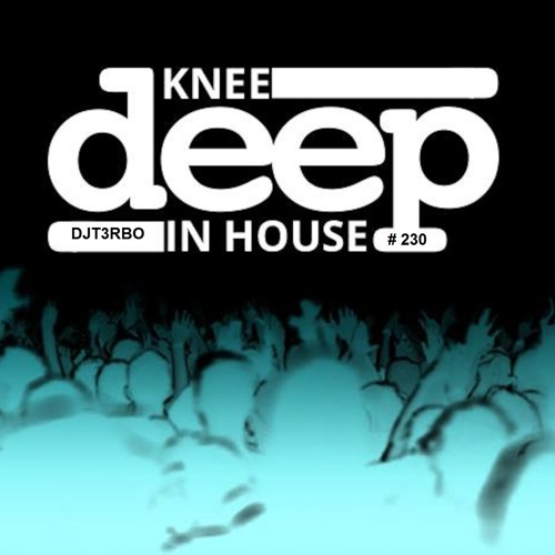 DJ T3RBO's Knee Deep in House Mix #230