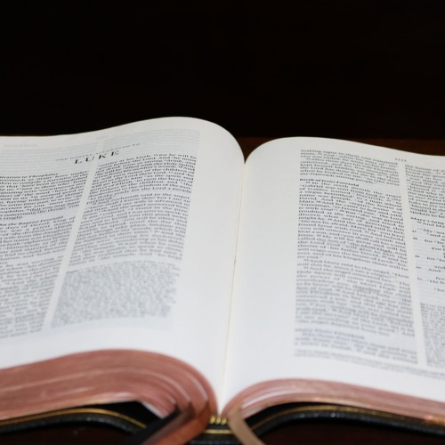 Luke 12:13-34, Your Treasure and Your Heart, June 30, 2019