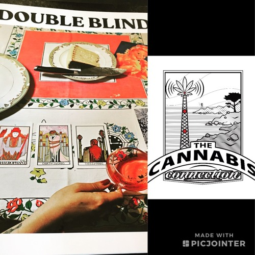 DoubleBlind Magazine - Shelby Hartman & Madison Margolin 06/28/19
