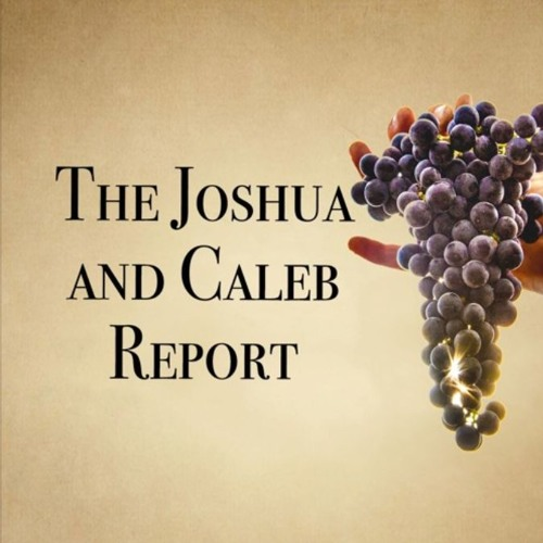The Rise and Fall of Nations, Celebrating America, & the Booming Grape Harvest