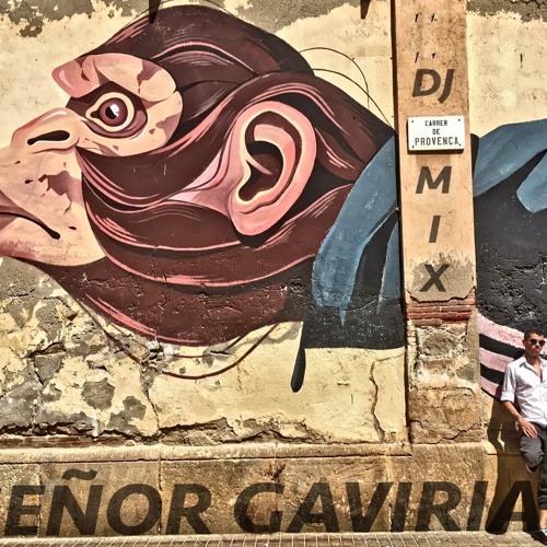 Señor Gaviria - Verano Corazon Mixtape