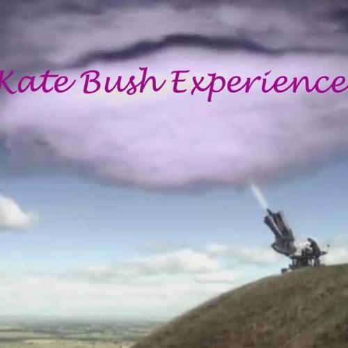 The Kate Bush Experience
