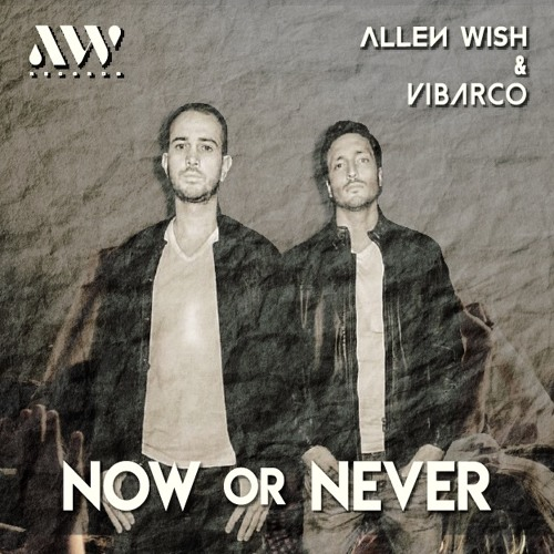 Allen Wish & Vibarco - Now Or Never (Original Mix)