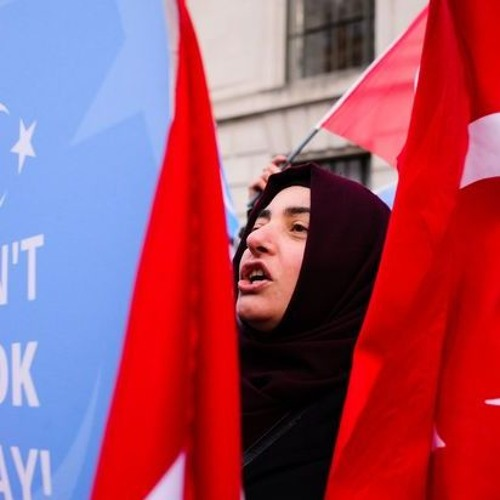 A risky gamble-Official Turkish delegation to inspect troubled Xinjiang