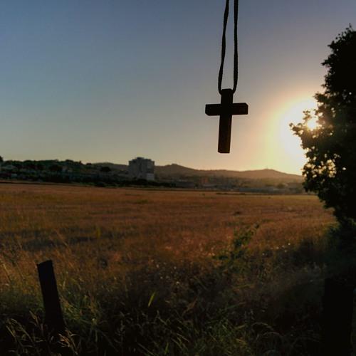 16 Julho 2019 - Terça-feira, memória litúrgica de Nossa Senhora do Carmo - Sl 68 (69)