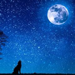 Auto-hipnose para Dormir  • Mente Vazia • Longa, #K2