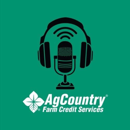 Episode 31 - The loan borrowing process