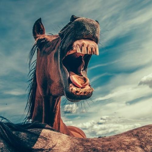 Mathias Duplessy & The Violins Of The World - Crazy Horse (Nayavarama Remix)