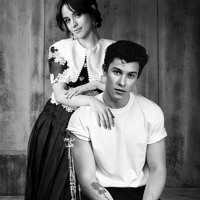 Shawn Mendes & Camila Cabello - Señorita [Tekno Remix]
