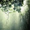 Peaceful Guitar, Meditation, Healing Music-Rain #8