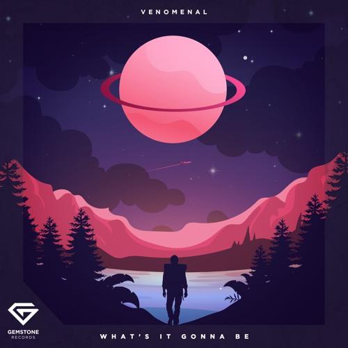 Venomenal - What's It Gonna Be