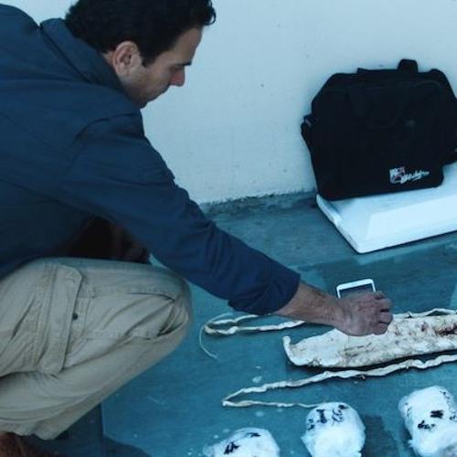 """Sea of Shadows"" Director Richard Ladkani On Working W/ Producer Leonardo DiCaprio"