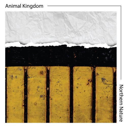 Animal Kingdom - Northern Nature