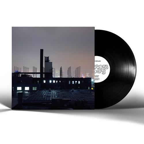 REMO SEELAND - Hollow City (feat. Reinier van Houdt and Norman Westberg) - HG1903