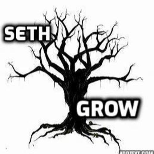 Grow - Seth - prod. Seth