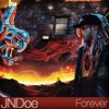 Chris Brown - Forever (JNDoe Cover)