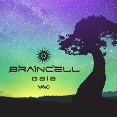 Braincell - Psychedlic Nightingale