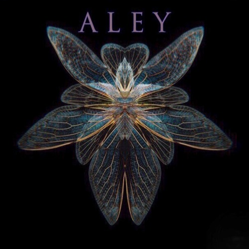 ALEY - Om Allure ( Keera Kushnirova & Daniil Korolev )
