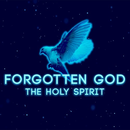 Forgotten God: Forget About His Will For Your Life | July 14, 2019 | Lindsay Rich