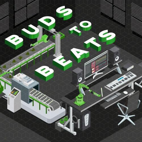 Buds to Beats after MoP 019 Mix