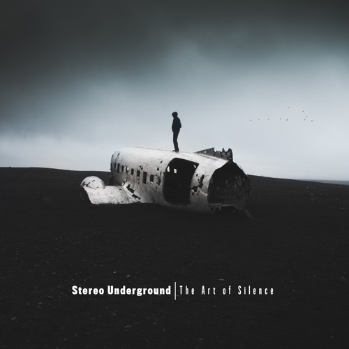 Stereo Underground - For A Moment Of Truth