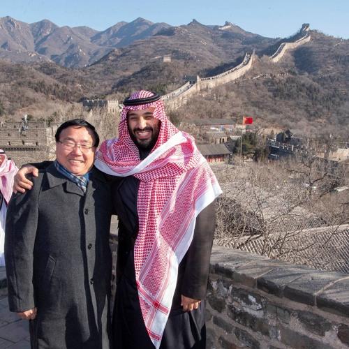 Muslim causes vs national interest-Muslim nations make risky bets