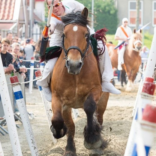 Tips VVV Sonja van der Voet 18 juli