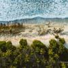 Download Sebas Ramis - UM Beach House 005 (Embassea) Mp3