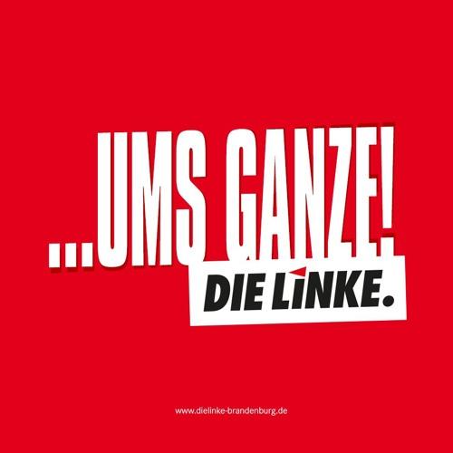DIE LINKE. Brandenburg: Kurzwahlprogramm zur Landtagswahl 2019