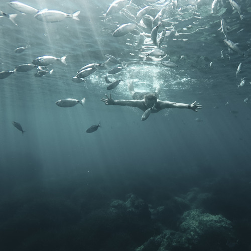 Deep Ocean [Free Download / Spotify / iTunes]