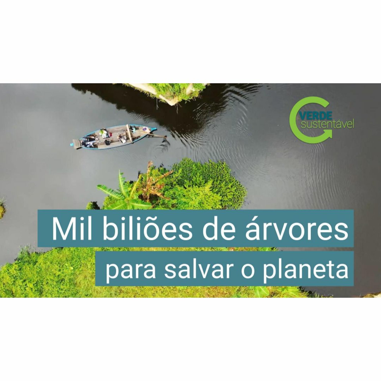 03 - Mil biliões de árvores