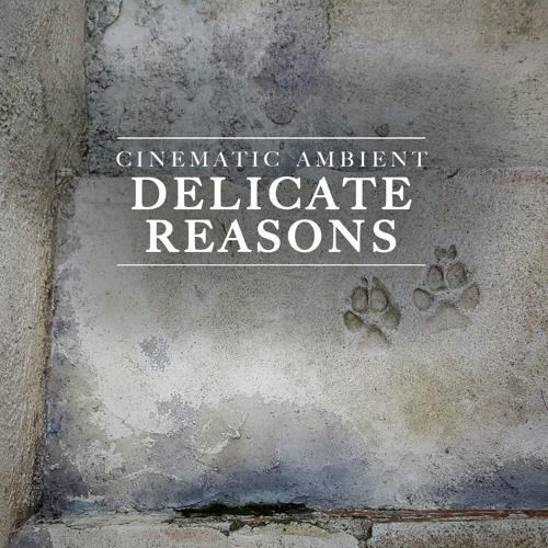 """""""DELICATE REASONS"""" (Cinematic Ambient Production Music)"""