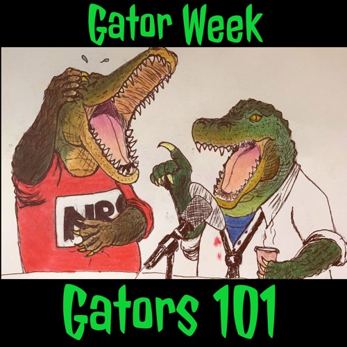 Gator Week - Gators 101