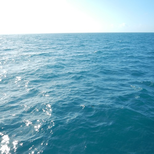 Ocean Sector