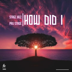 How Did I (Feat. Pali Stage)
