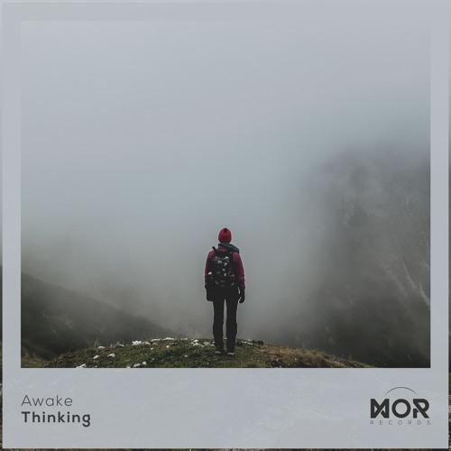 Awake - Thinking
