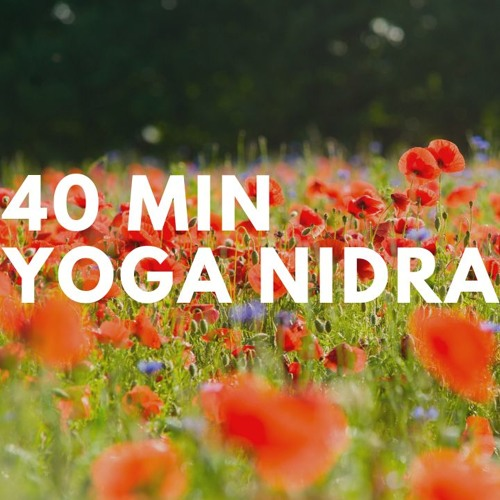 Yoga Nidra   Balans   Magic Dream Company