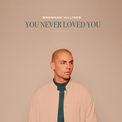 You Never Loved You