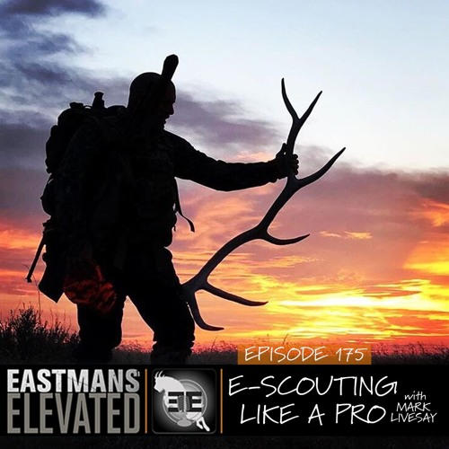 175- E-Scouting Like A Pro with Mark Livesay
