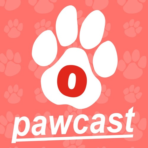 Pets And Hot Weather Pawcast