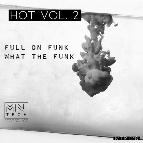 EXCLUSIVE: Full On Funk - What The Funk (Original Mix) [Minitech Recordings]