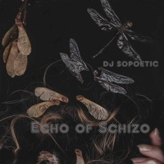 Echo of Schizo 044 //  SOPOETIC // TRACKLIST in Description