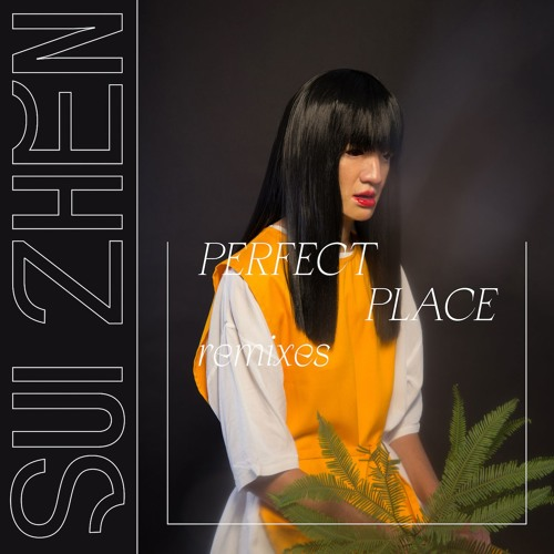Sui Zhen - Perfect Place Remixes
