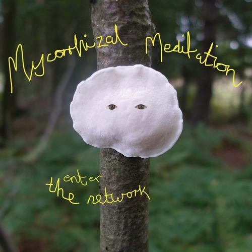 Mycorrhizal Meditation