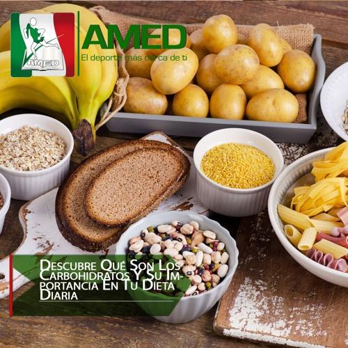 Podcast 322 AMED - Descubre Qué Son Los Carbohidratos Y Su Importancia En Tu Dieta Diaria